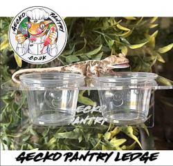 Gecko Acrylic Feeding Ledge